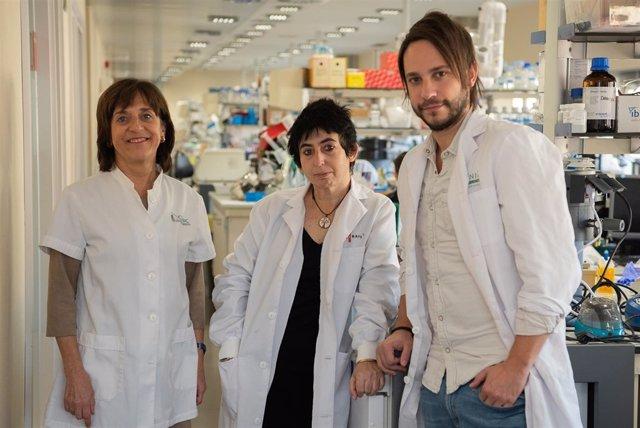 Los investigadores Anna Novials, Carlos Castaño y Marcelina Párrizas