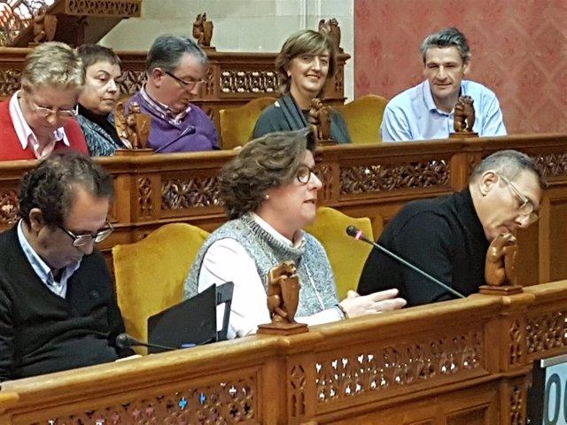 Catalina Cirer en el pleno del Consell