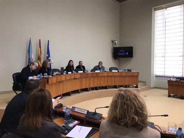 Comisión de investigación de recortes en la sanidad pública gallega