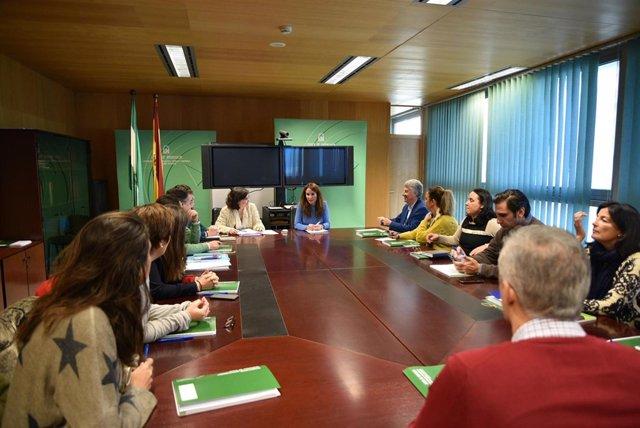 La delegada de Empleo de la Junta en Cádiz, Gema Pérez