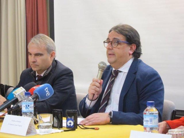 El consejero de Sanidad, José María Vergeles