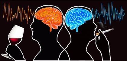 Descubren diferentes áreas del cerebro que están relacionadas con el consumo de tabaco y alcohol