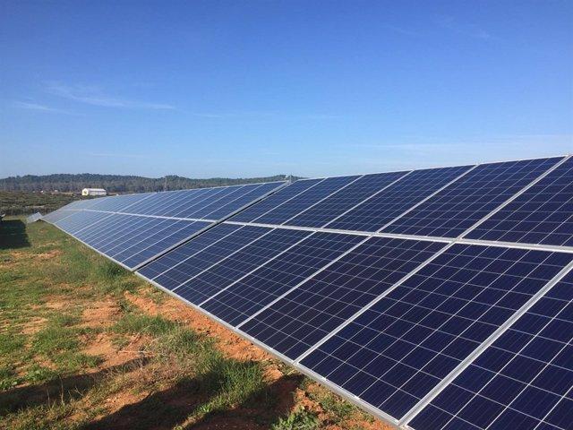 Planta solar fotovoltaica La Matallana.