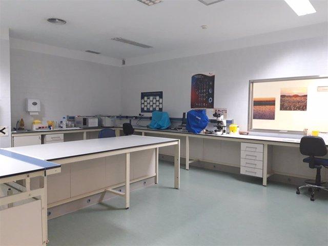 Laboratorio de hematología hospital Ciudad Real