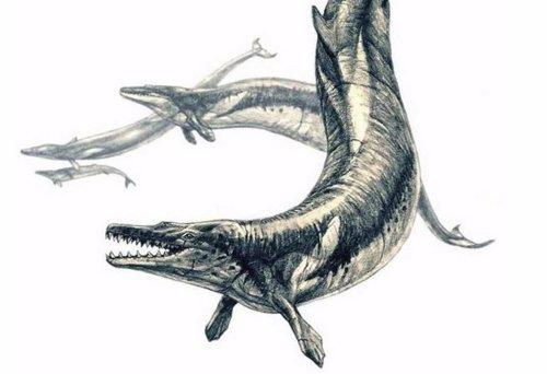 Recreación de Basilosaurus