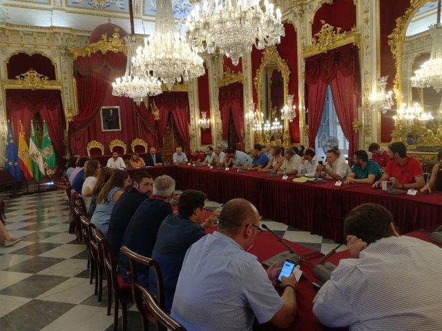 Reunión del Consejo de Alcladías en la Diputación de Cádiz