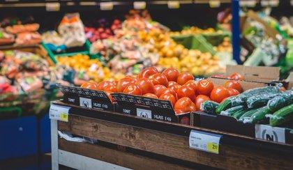 Educación busca proyectos que promuevan los buenos hábitos alimentarios en colegios