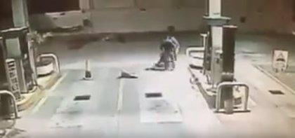Un perro justiciero evita el robo a un empleado de una gasolinera en México