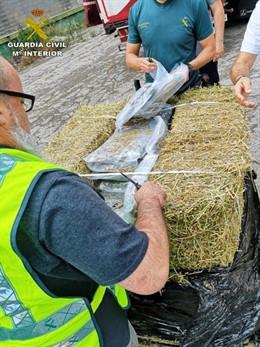 Intervenen a Catalunya 2.700 quilos de marihuana i detenen 25 persones