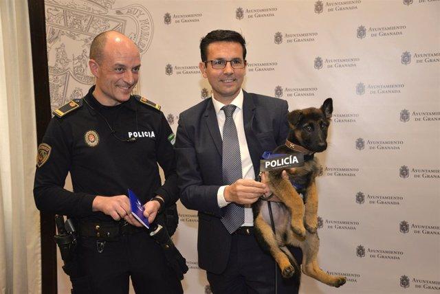Stan Lee, el cachorro de la unidad canina local, participará en el día sin coche