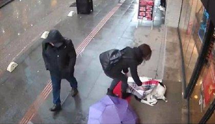 Las cámaras de seguridad captan el gesto que tuvo una mujer con un perro de la calle que se estaba congelando