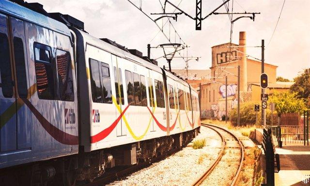 Metre i trens de Palma