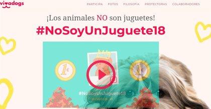 La campaña #nosoyunjuguete18 de Vivadogs, para luchar contra el abandono animal, recauda 10.000 euros para protectoras