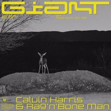 Calvin Harris vuelve a la carga junto a Rag'n'Bone Man con su primer single de 2019