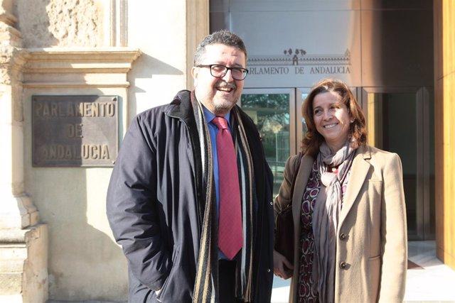 El parlamentario electo de Vox por Sevilla Francisco Serrano en la Cámara