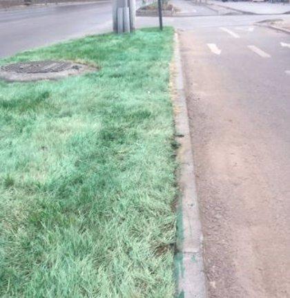 Se seca el césped en La Florida, Chile, y lo pintan de verde para que luzca mejor