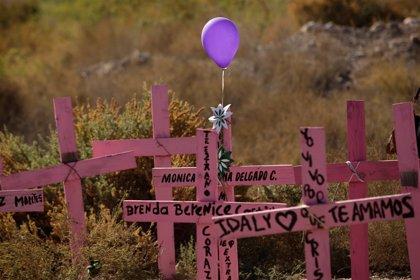 Con 111 víctimas los feminicidios continúan en el estado mexicano de Veracruz a pesar de la Alerta de Género