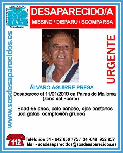 Cerquen un home de 65 anys desaparegut en el port de Palma des del divendres