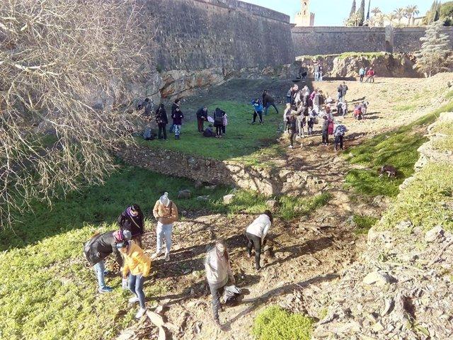 Plantación de árboles junto a la muralla de Badajoz
