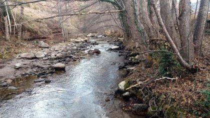 La Fiscalia de Medi Ambient obre diligències contra Endesa per presumpte delicte ecològic al Flamisell