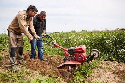 La Obra Social La Caixa destinó más de 70.000 euros a tres proyectos sociales de Salamanca en 2018
