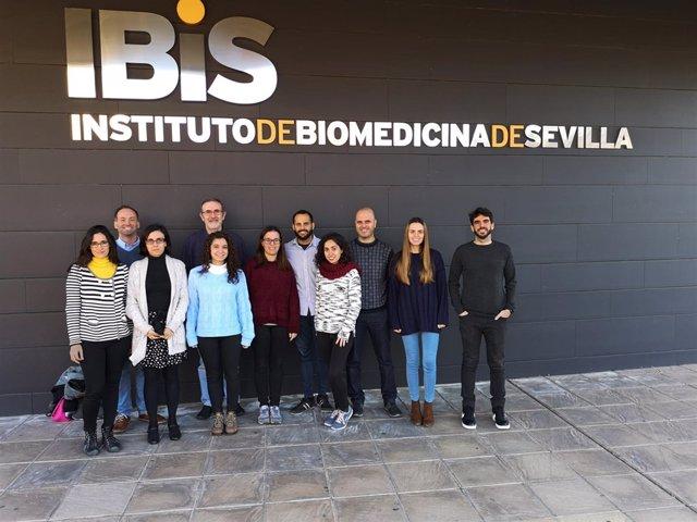 Ibis descubre nuevo circuito que conduce a un mayor crecimiento cáncer de colon