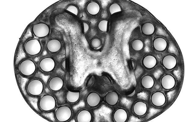 Impresión en 3D para crear médula espinal