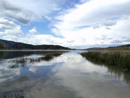 Los pantanos de la cuenca del Segura ganan 10 hm3 en la última semana