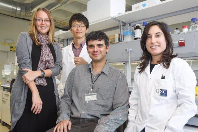 Nanopartículas para transportar fármacos al interior de los tumores cerebrales