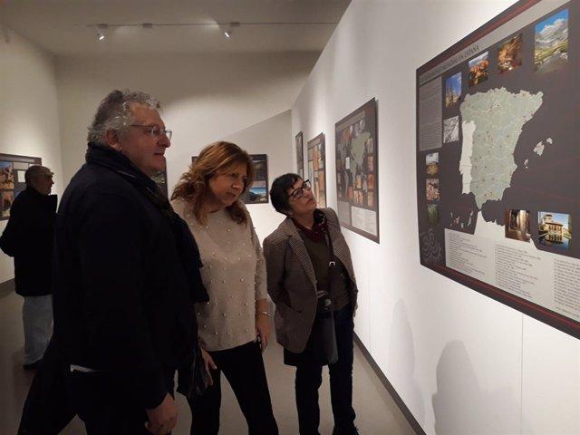 Exposición sobre arte rupestre en el Museo Íbero