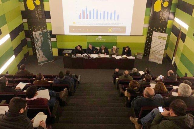 Reunión del Consejo Sectorial de Cooperativas Agro-alimentarias de Andalucía.