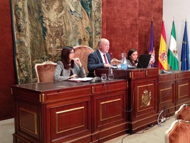 Antonio Ruiz preside el Pleno de la Diputación de Córdoba