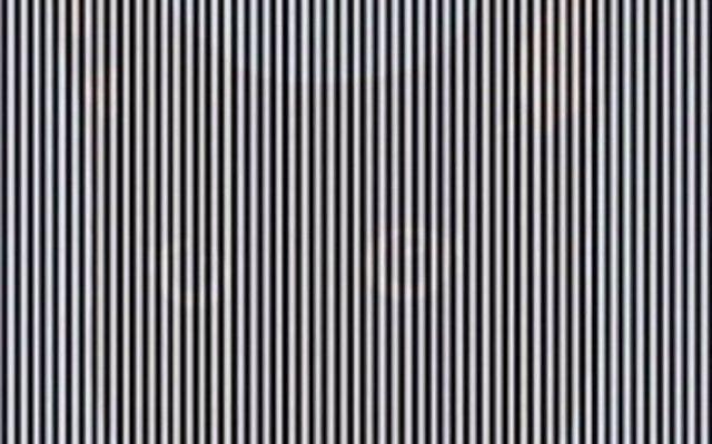 Si sacudes la cabeza podrás ver la imagen que se esconde en esta ilusión óptica