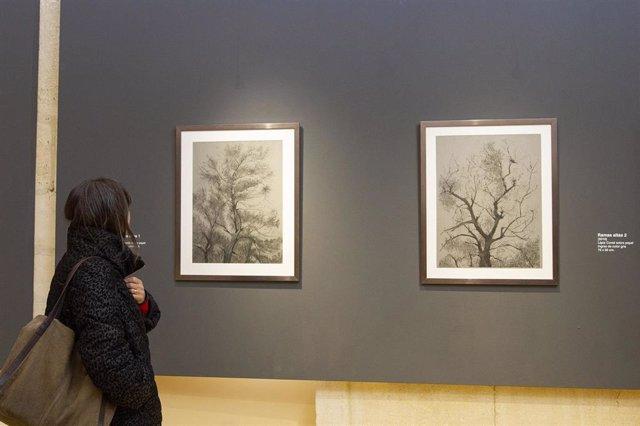 Una mujer observa obras de la muestra 'Corpulentia. Las damas del viejo olivar'.