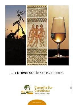 Cartel de 'Un universo de sensaciones'