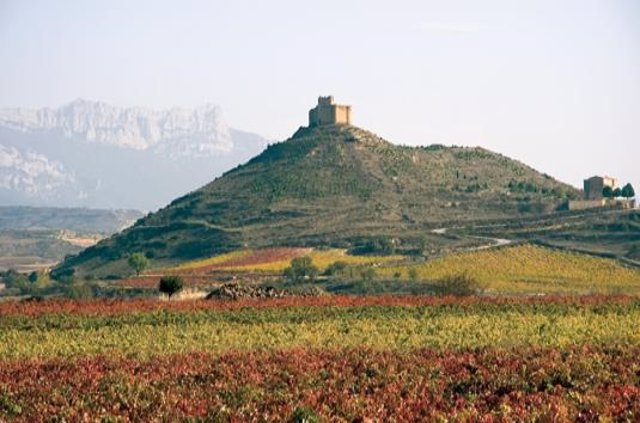 Castillo de Davalillo en San Asensio