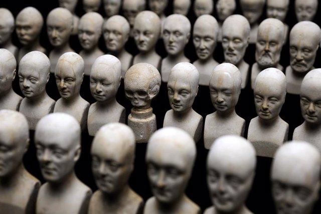 Conjunto de sesenta cabezas en miniatura utilizadas en frenologíamm,
