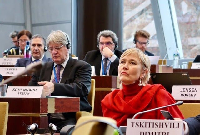 El diputado del PSOE Gutiérrez Limones en el Consejo de Europa