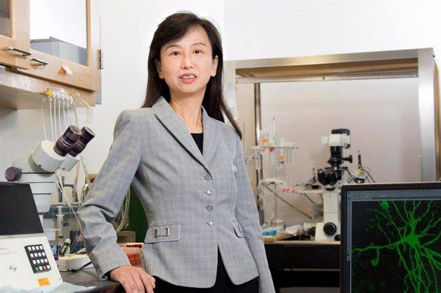 Zhen Yan, profesora de la Facultad de Medicina y Ciencias Biomédicas Jacobs