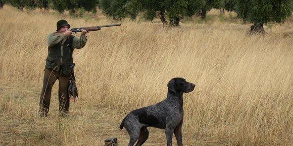 1. Page se plantea exonerar la tarifa de la licencia de caza para los usuarios de C-LM si gana las elecciones
