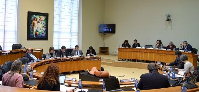 Reunión de la Comisión Institucional de la Cámara gallega