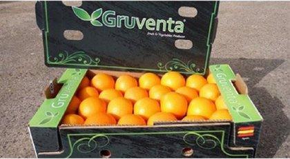 """El PP exige """"medidas correctoras"""" si los acuerdos de la UE perjudican a la naranja"""