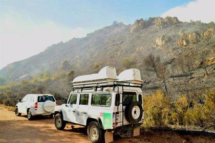 Controlados dos incendios forestales que afectan a la costa de Granada