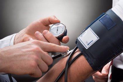 Incluso en adultos jóvenes, la hipertensión puede estar relacionada con una contracción del cerebro