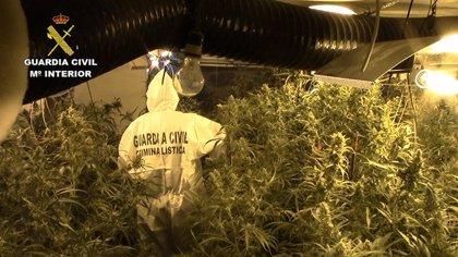Diez detenidos por tráfico de drogas en Lleida, Tarragona y Girona