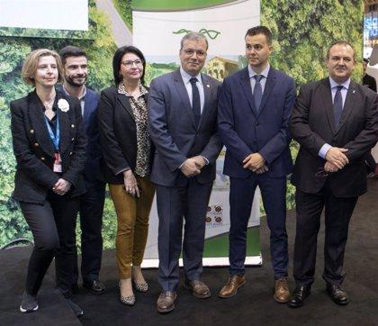 Retortillo se reúne con los representantes de las oficinas Españolas de Turespaña, junto a la secretaria de Estado