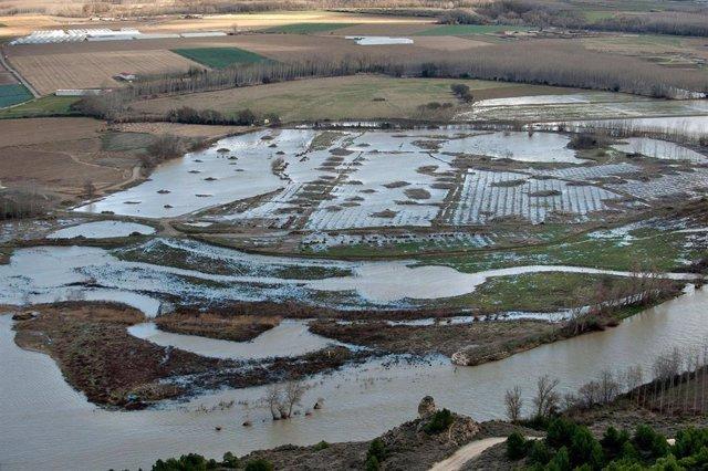 Campos inundados por el desbordamiento del Ebro