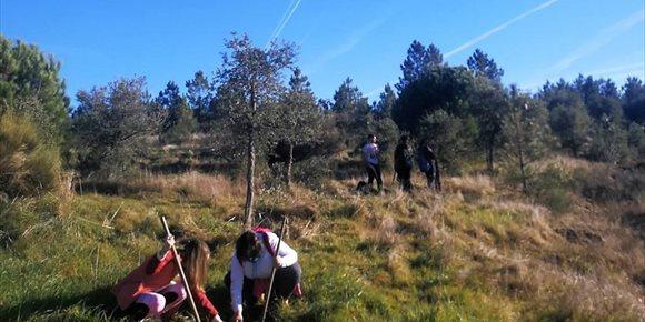 5. Comienza en la Sierra de San Pedro el programa Plantabosques de Adenex