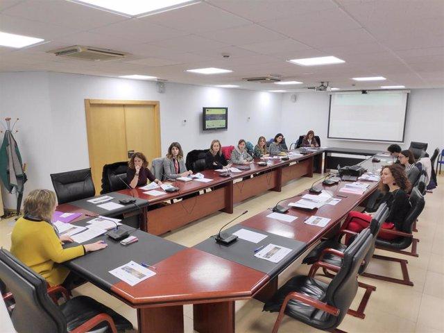 Reunión proyecto Fémina