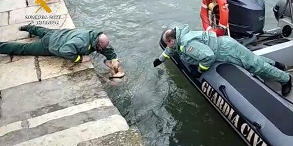 7. La Guardia Civil rescata a una perra caída al mar en Santander